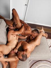 Three hot models from Randy Blue. Adrian, Robert & Sean